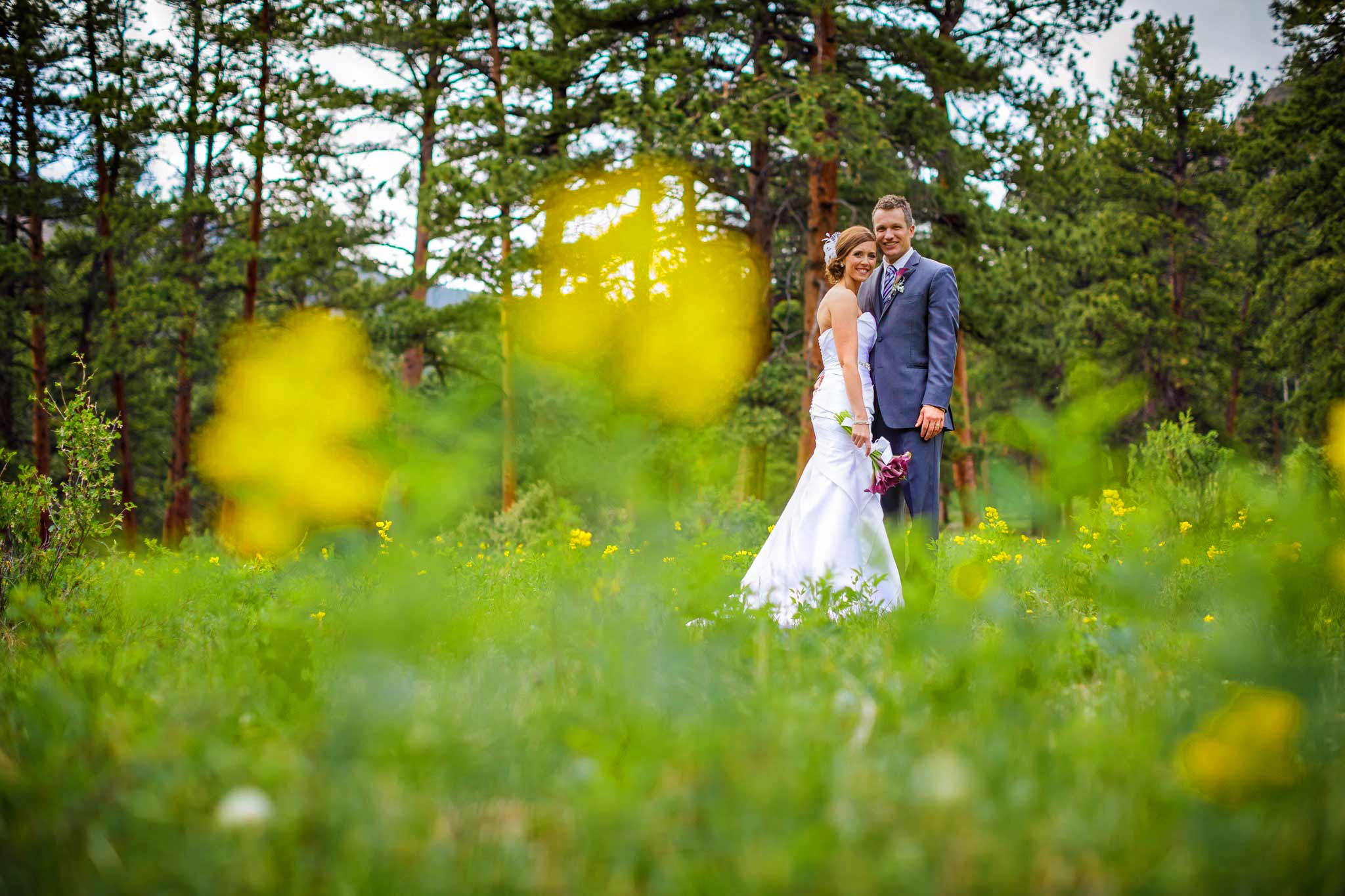 Wedding photo in Estes Park, CO