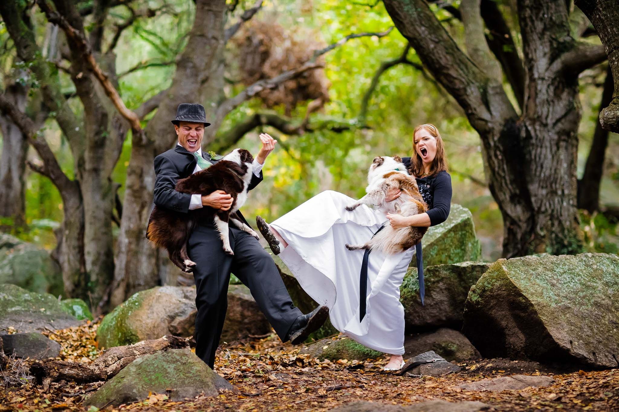 Wedding couple and pets in San Luis Obispo, CA