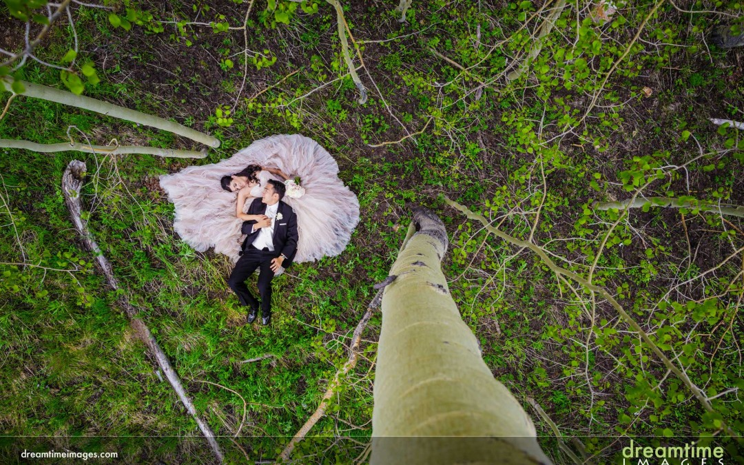 Stuck in a Tree | Beaver Creek, CO | Amanda + Ivan