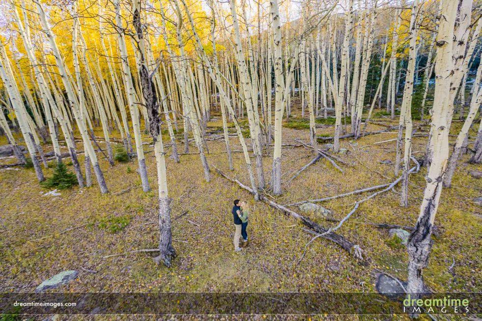 engagement in aspen grove