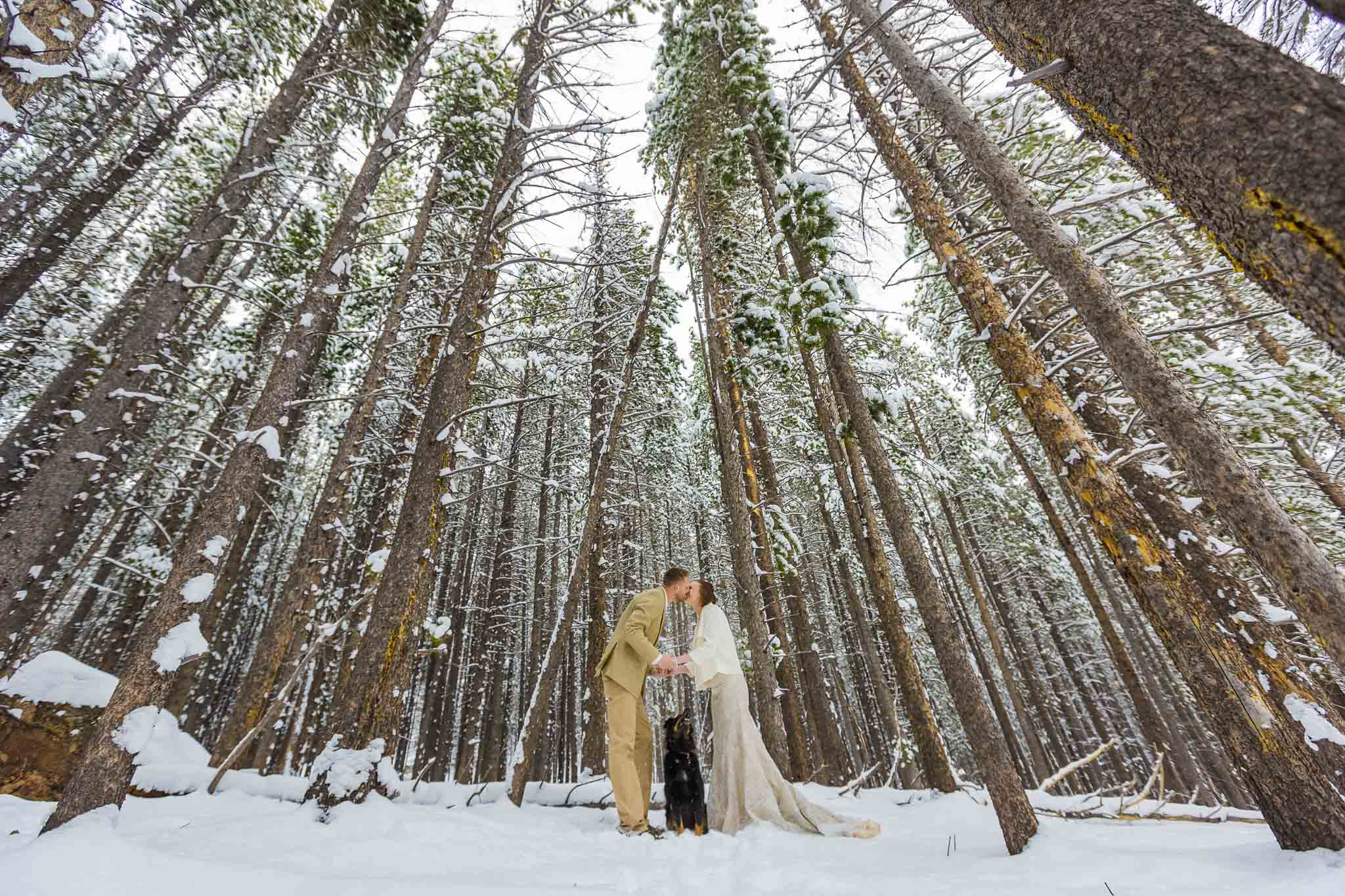 Couple kissing near Bear Lake in RMNP in snow
